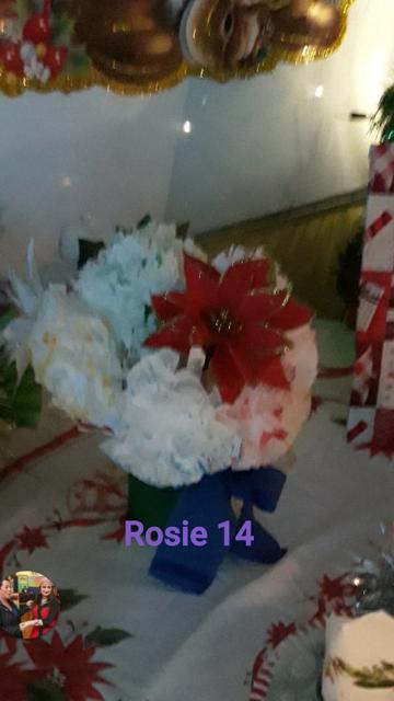 Rosie McGinley, Sligo