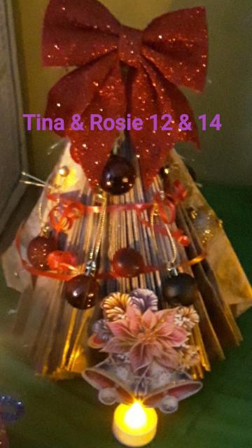Tina, 12 & Rosie McGinley, 14, Sligo
